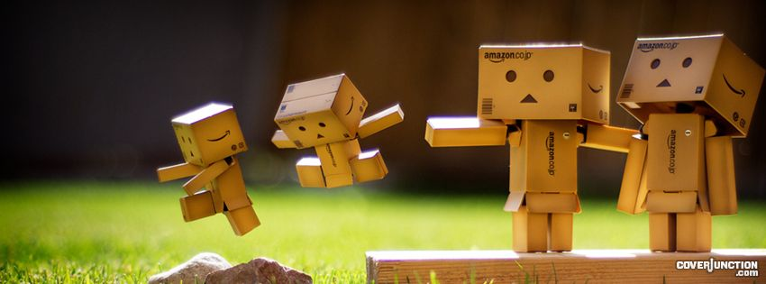 Danbo - Careful Facebook Cover