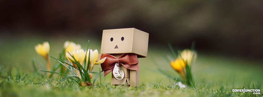 Danbo - Crocuses Facebook Cover