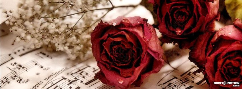 Rose Love and Sheet Music Facebook Cover
