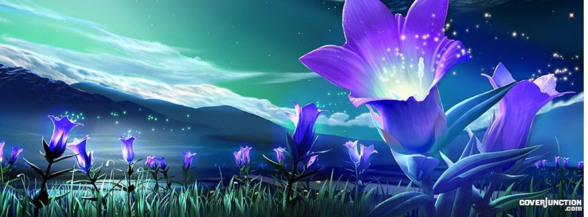 Blossoming Night Facebook Cover - CoverJunction