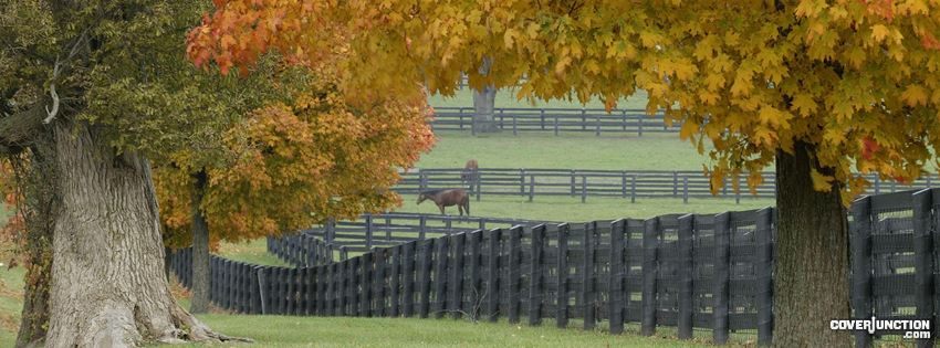 horse farm Facebook Cover