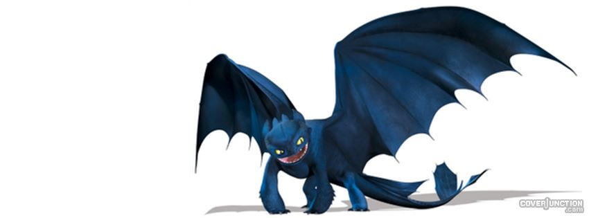 Toothless How I Trained Your Dragon Facebook Cover