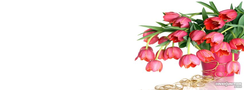 spring flowers Facebook Cover