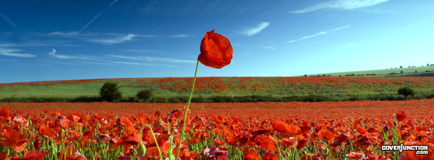 Remembrance Day facebook cover
