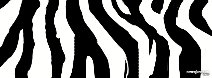 Zebra Facebook Cover - CoverJunction