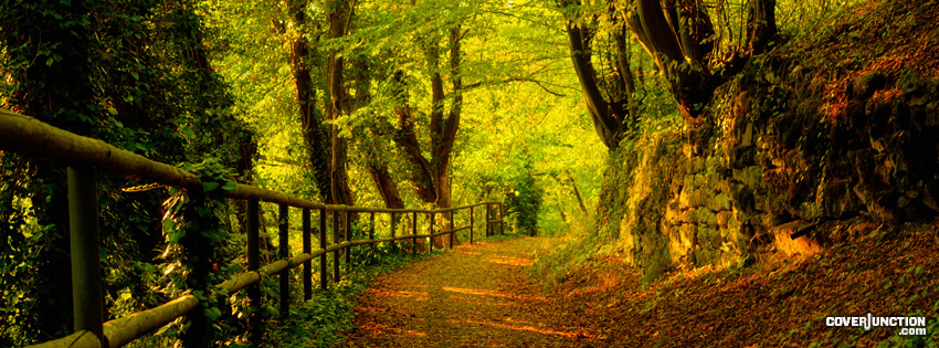 Forest Trail Facebook Cover - CoverJunction