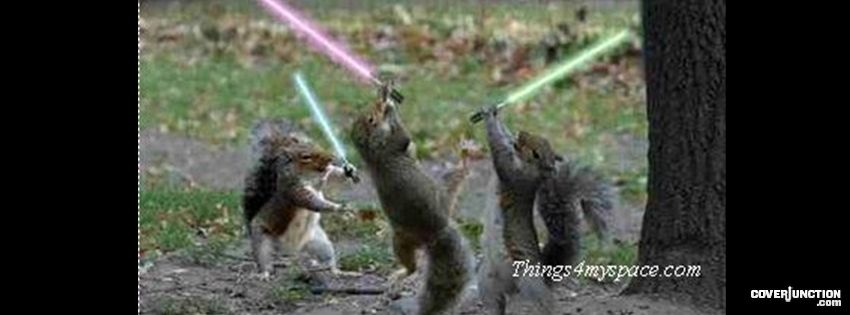 Squirrels with snipers