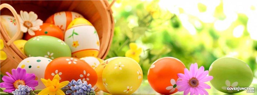 Egg basket facebook cover